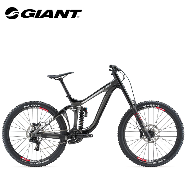 画像1: 2019 GIANT GLORY ADVANCED 1 (1)