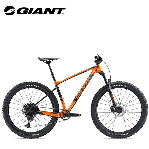 画像1: 2019 GIANT XTC ADVANCED + 2 (1)